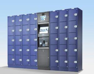 Share rental electronic locker system