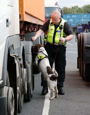 Approval for dog handling retraining programme.